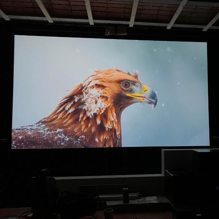 immagine alta definizione proiettata su muro con ottima prestazione utilizzando pittura proiettore pro